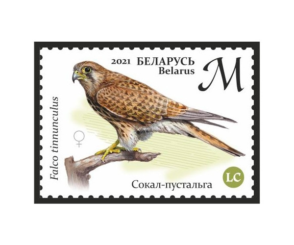 Белоруссия. Хищные птицы Беларуси. Серия