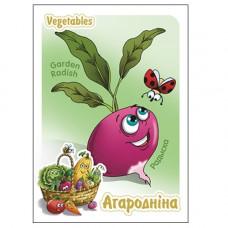 Белоруссия. Редиска (Радыска). Немаркированная почтовая карточка