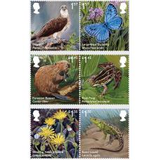 Великобритания. Реинтродуцированные виды. Серия из 6 марок