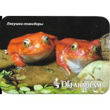 """Карманный календарик """"Океанариум, Санкт-Петербург. """"Лягушки-помидоры"""""""