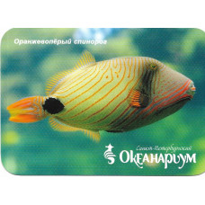 "Карманный календарик ""Океанариум, Санкт-Петербург. Рыба ""Оранжевопёрый спинорог"""