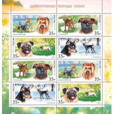 Россия. Декоративные породы собак. Лист малого формата