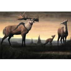 Палеонтологическое наследие России. Большерогий олень