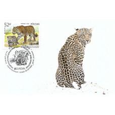 """EUROPA CEPT. Национальная дикая природа. Исчезающие виды животных. Переднеазиатский леопард. Картмаксимум с гашением """"Санкт-Петербург 191025"""""""