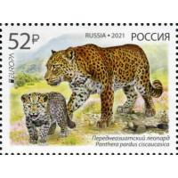 Россия. EUROPA CEPT. Национальная дикая природа. Исчезающие виды животных. Переднеазиатский леопард. Марка